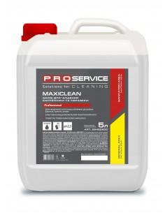 Моющее средство для ванной комнаты PRO Service MAXICLEAN F, 5 л